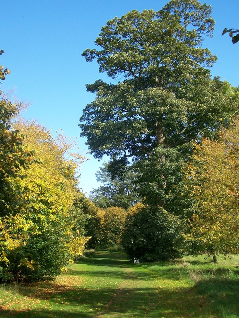 Autumn colour in Camer Country Park