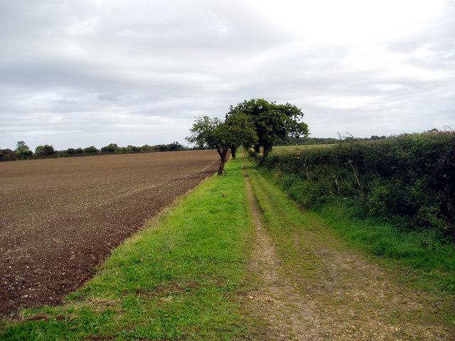 Footpath East of Mulbarton