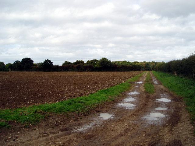 Bridleway North East of Mulbarton