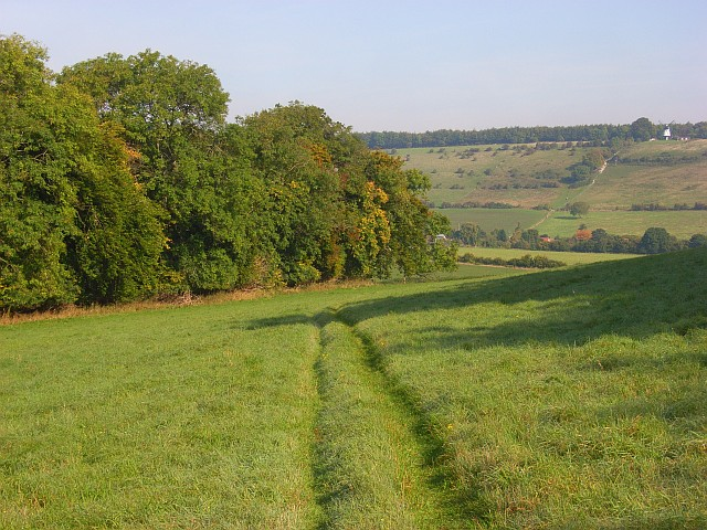 Woodland and farmland, Turville