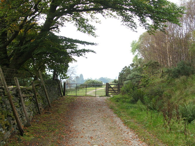 Highlandman's Road - heading out of the woods