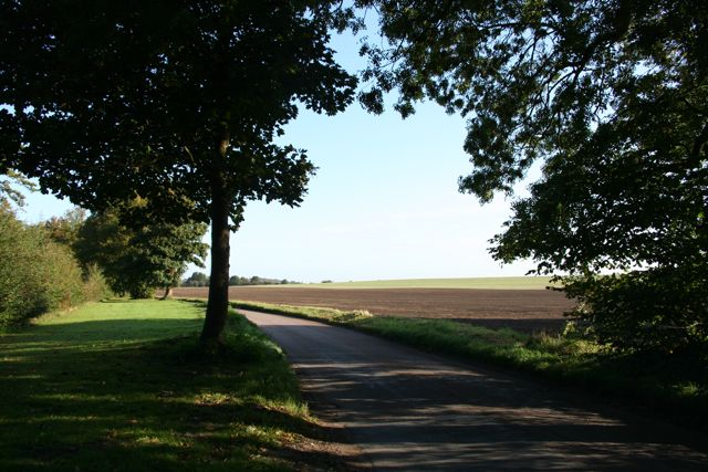The Road to Babraham near Home Farm