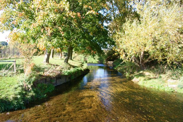 Riverside view beyond the sewage works