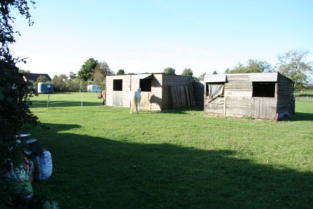 Stables with horses and fields