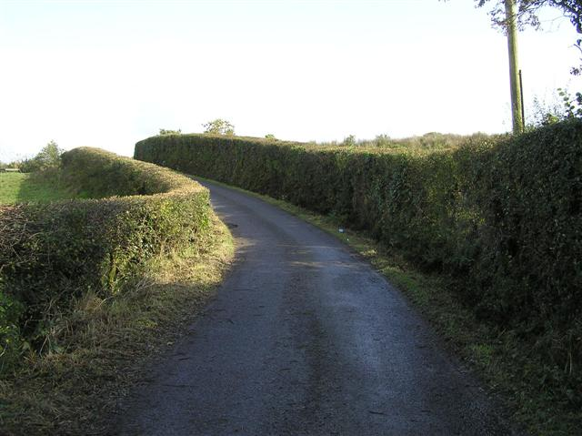 Country road near Mondooey