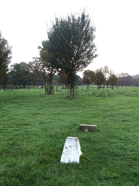Snook's Grave, Box Moor