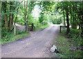 SU2710 : Near Petershold Farm by Pierre Terre