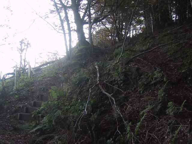 Steps up Bulverton Hill