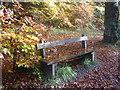 NS6552 : Leaf strewn bench at Calderglen Country Park by Dannie Calder