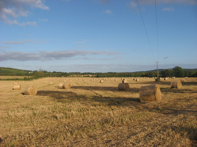 Bales at Flemingtown, Co. Meath