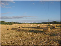 O1060 : Bales at Flemingtown, Co. Meath by Kieran Campbell