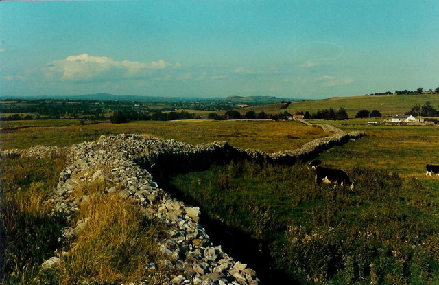 Stone wall in Ballinvally, Co. Meath