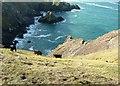 SW6715 : George's Cove, Predannack Cliffs by Simon Huguet