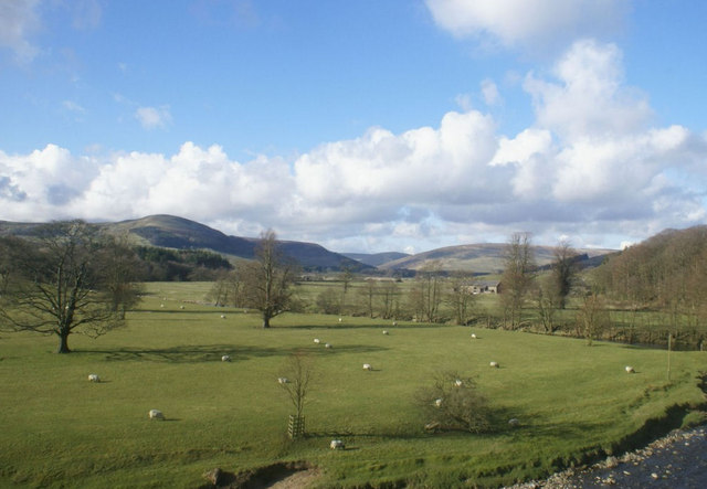 Field with sheep near the River Hodder