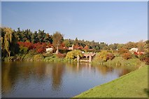 TL8425 : Autumn Colour Around the Lower Lake, Marks Hall by Trevor Harris
