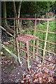 SO3480 : Unusual Gate Stile by Derek Reynolds