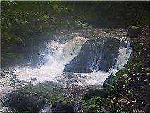 NO2501 : Waterfall on Lothrie Burn by geojoc