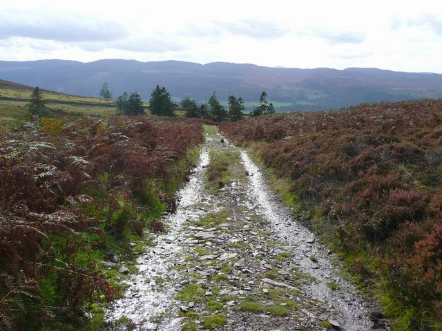 Track down to Woodside of Tulliemet - II