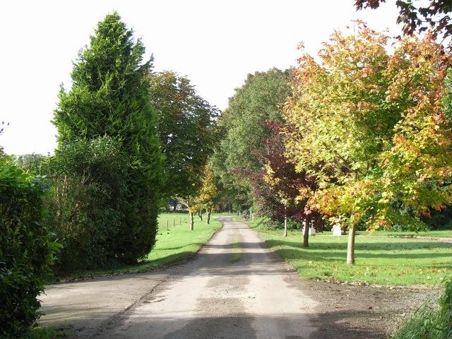 Antylstown Lane, near Navan, Co. Meath