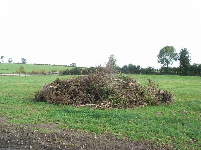 Bonfire in the making? At Graigs, near Navan, Co. Meath
