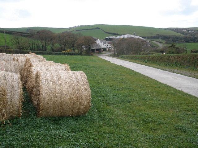 Trehole Farm