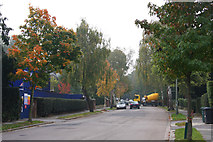 TQ2688 : Winnington Road by Martin Addison