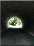 SK8336 : Tunnel under the Stenwith road by Kate Jewell