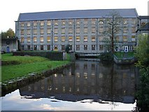 N9732 : The Mill, Celbridge by Ian Paterson