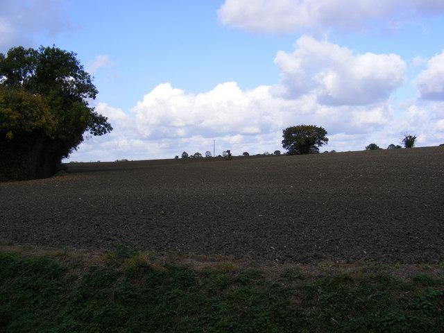 Farmland at Saxtead Bottom