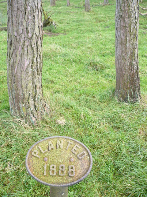 Plaque dating the woodland to 1888