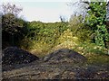 SM9223 : Abandoned quarry at Lady's Cross, Camrose by Dylan Moore