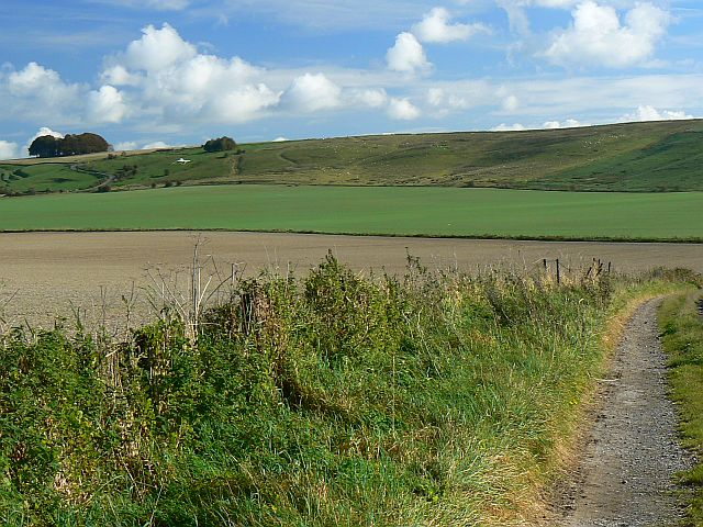 A view of Hackpen Hill, near Winterbourne Bassett