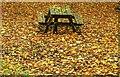 D3014 : Picnic table, Glenarm forest by Albert Bridge