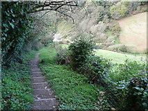 SX8950 : South Devon Coastal Footpath, Near Dawn End by Tom Jolliffe