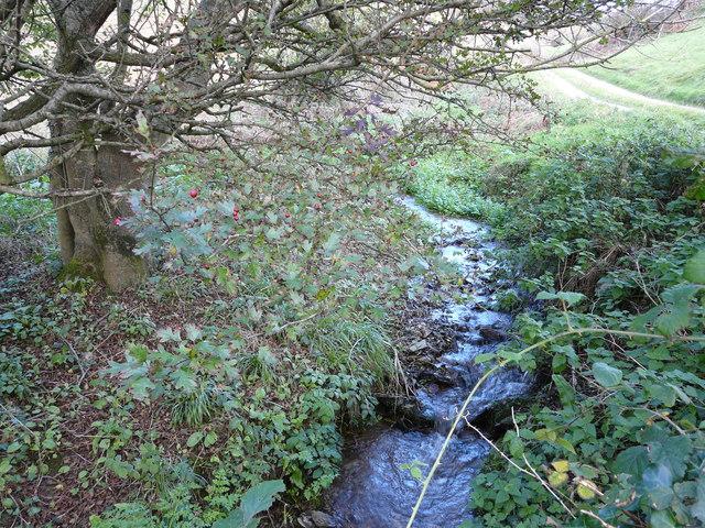 Stream running to Mill Bay Cove