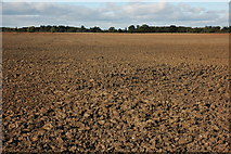 SO8843 : Ploughed field near Dunstall by Philip Halling