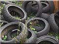 NZ1664 : Part worn Pirellis by michael ely