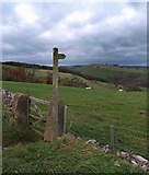 SK1868 : Footpath sign Derbyshire Dales by Steve  Fareham