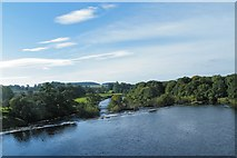 NY9170 : Weir from Chollerford Bridge by Terry Robinson