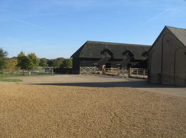 Farmyard - Home Farm