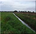 TA1142 : Arnold and Long Riston Drain by Paul Harrop