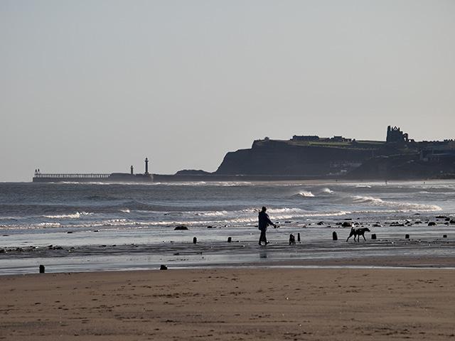 Walking the dogs, Sandsend Beach