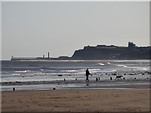 NZ8612 : Walking the dogs, Sandsend Beach by Stephen McCulloch