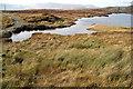 H0381 : Lough Slug: Barnesmore by louise price