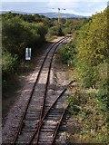 SX8672 : Railway line, Jetty Marsh by Derek Harper