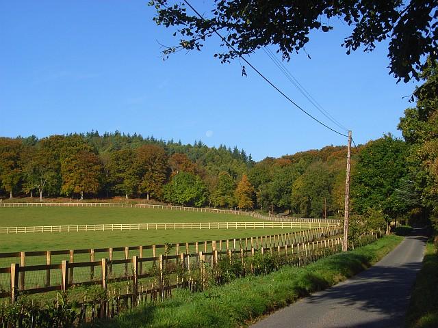 Benhams Lane, Fawley