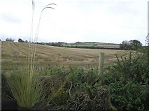 C2713 : Drumbarnett Townland by Kenneth  Allen