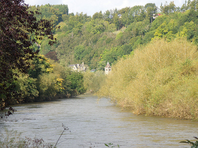 The River Wye near Lydbrook