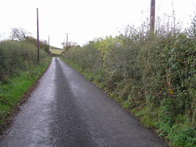Road at Plaster