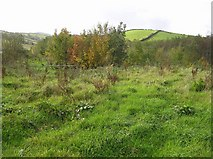 C3315 : Creeve Townland by Kenneth  Allen